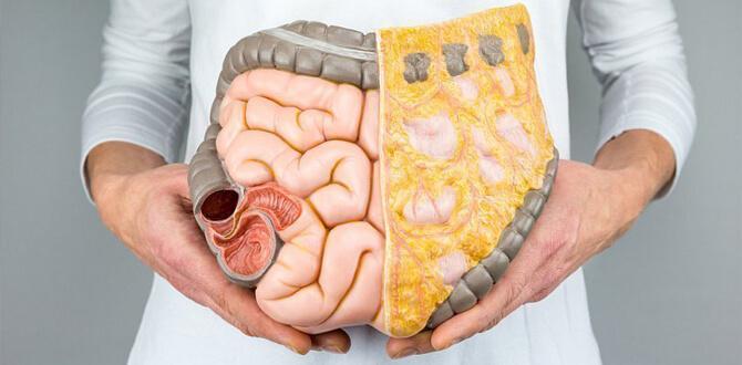 Диарея, запор, проблемы пищеварительной системы