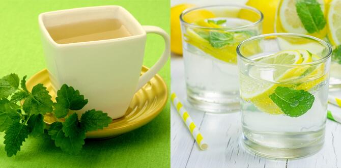 Отвар с мелиссой, вода с лимоном