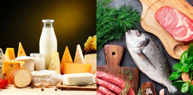 Молочные продукты, мясо и рыба