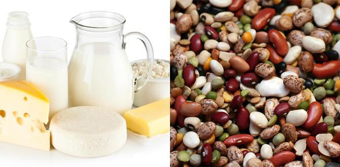 Молочные продукты, бобовые