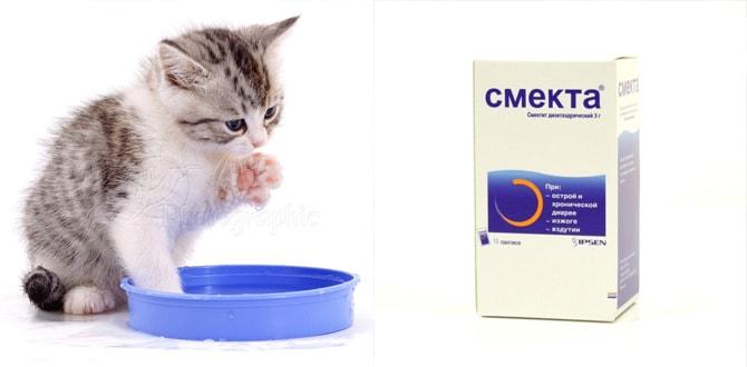 Котенок пьет, смекта